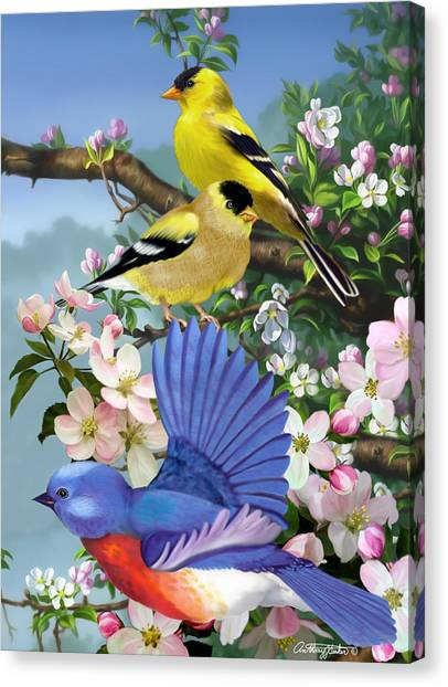 Bluebird And Goldfinch Canvas Print