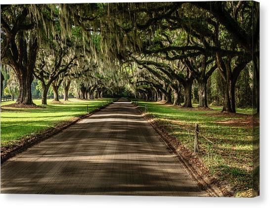 Boone Plantation Road Canvas Print