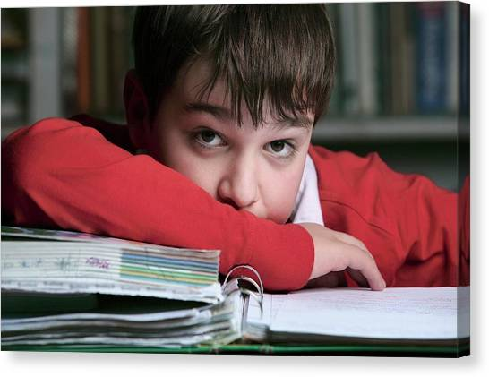Classroom Canvas Print - Bored Boy Not Doing His Homework by Mauro Fermariello/science Photo Library