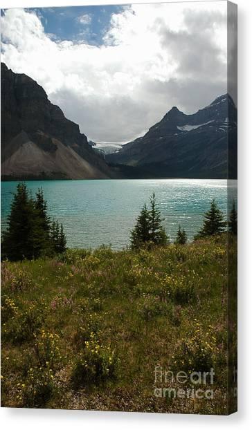 1010a Bow Lake Alberta Canvas Print