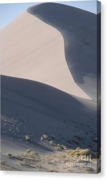 Sandy Desert Canvas Print - Bruneau Dunes State Park, Idaho by William H. Mullins