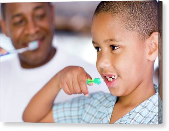 Toothbrush Canvas Print - Brushing Teeth by Ian Hooton/science Photo Library