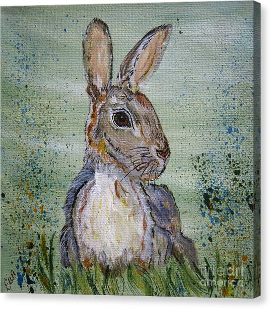 Bunny Rabbit Canvas Print