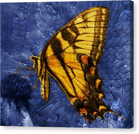 Analog Canvas Print - Butterfly by Jack Zulli