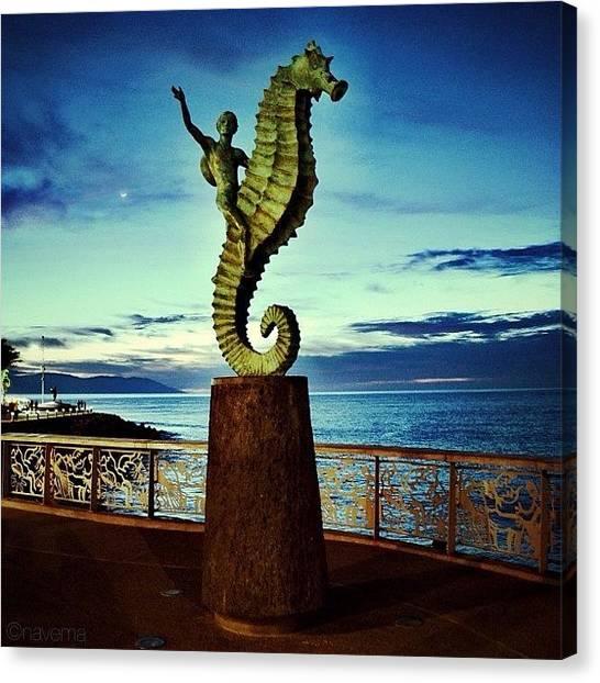 Seahorses Canvas Print - Caballeo Del Mar by Natasha Marco
