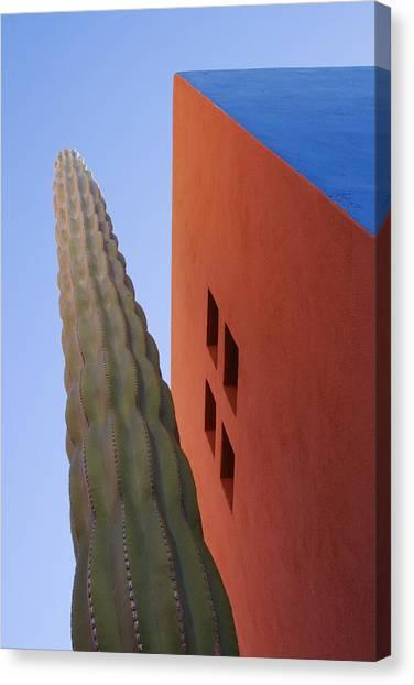 Cactus Against Colorful Walls Canvas Print by Pixelchrome Inc