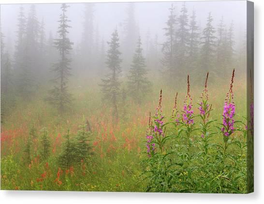 British Columbia Canvas Print - Canada, British Columbia, Revelstoke by Jaynes Gallery