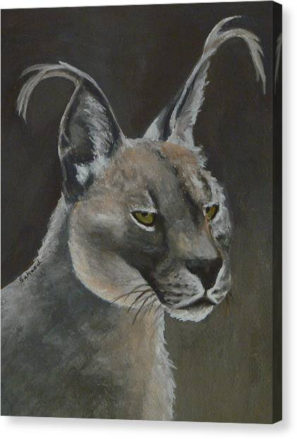 Caracal Cat Canvas Print