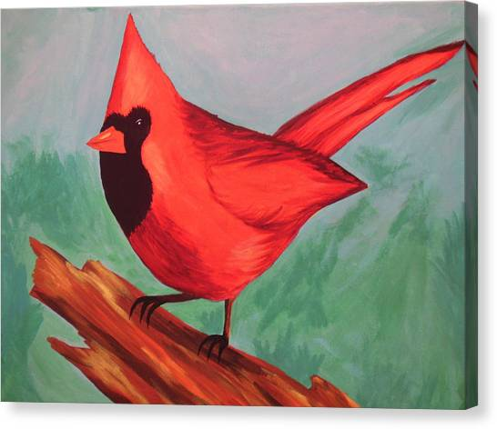 Cardinal Canvas Print by Virginia Forbes