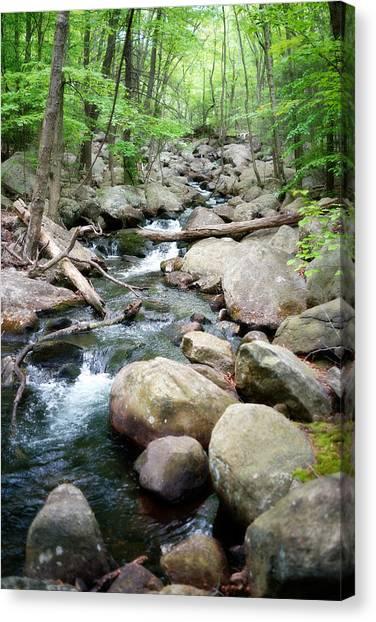 Catskills Waterfall Canvas Print