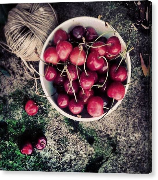 Food And Beverage Canvas Print - Cherries! by Emanuela Carratoni