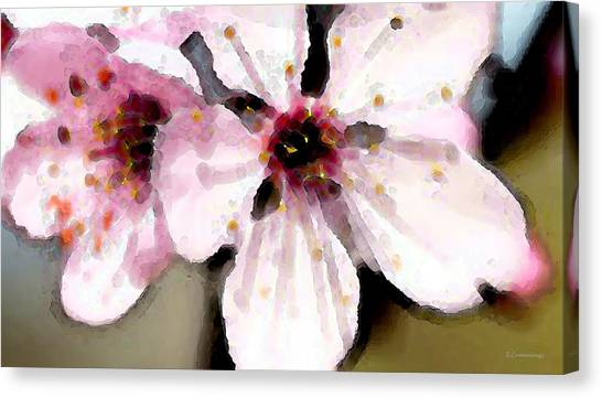 Cherry Blossoms By Sharon Cummings Canvas Print by William Patrick