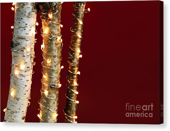 Christmas Lights Canvas Print - Christmas Lights On Birch Branches by Elena Elisseeva