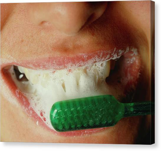 Toothbrush Canvas Print - Cleaning Of Teeth by Martin Dohrn/science Photo Library