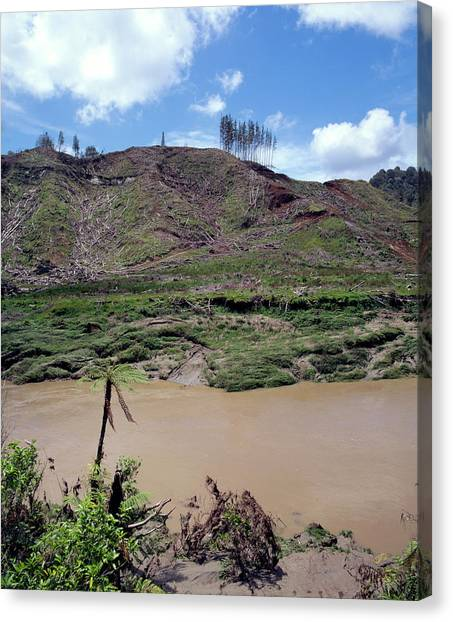 Cleared Forest Beside A Sediment-laden River Canvas Print by Simon Fraser/science Photo Library