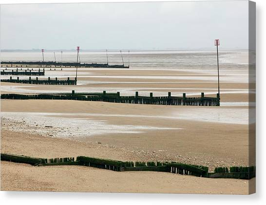 Coastal Defences Canvas Print by Colin Cuthbert/science Photo Library