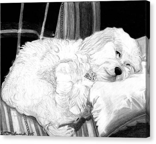 Cockapoo Dog Portrait   Canvas Print by Olde Time  Mercantile
