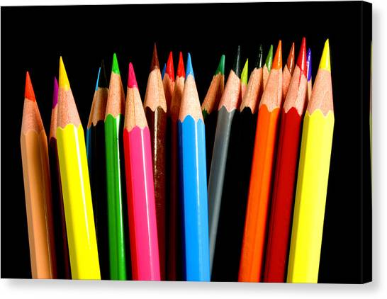 Pencils Canvas Print - Colored Pencils by Michael Tompsett
