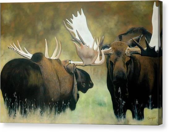 Confrontation Canvas Print