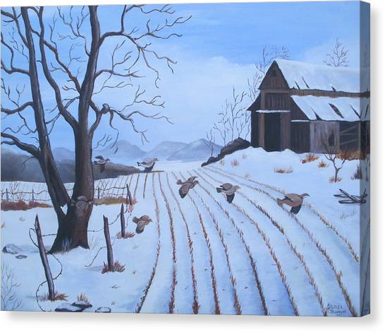Cornfield Canvas Print by Glenda Barrett