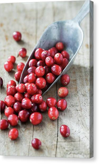 Cranberries Canvas Print by Gustoimages