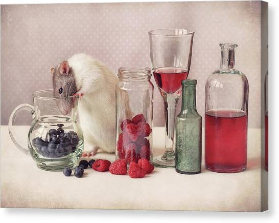 Blueberries Canvas Print - Curious by Ellen Van Deelen
