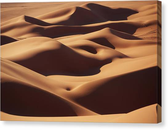 Sahara Desert Canvas Print - Curves by Ivan Slosar