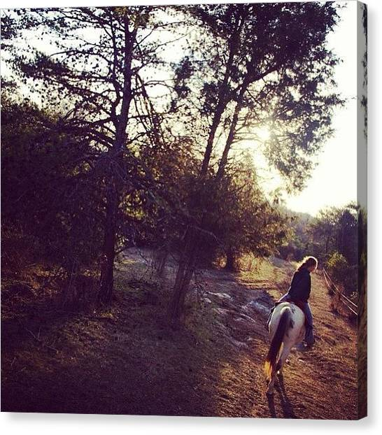 Saddles Canvas Print - #cute #horse #horseback #riding by Crystal Jernigan