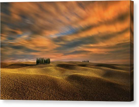 Cypress Canvas Print - Cypresses... by Krzysztof Browko