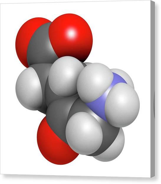 D-aminolevulinic Acid Ala Drug Molecule Canvas Print by Molekuul