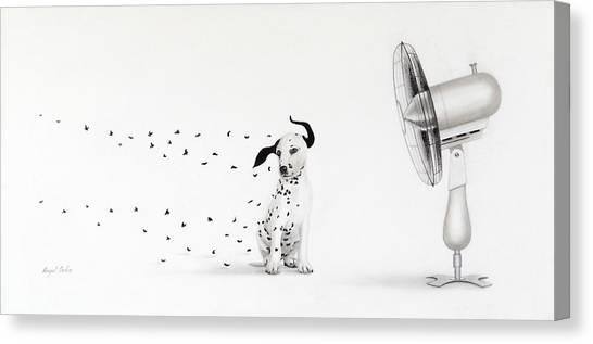 Dalmita V Canvas Print