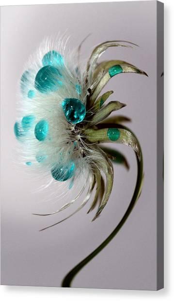 Dandelion Blues Canvas Print