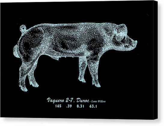 Danish Duroc Canvas Print