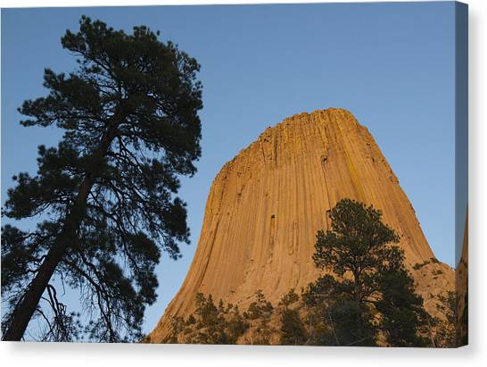 Devils Tower Canvas Print - Devils Tower National Monument Wyoming by Kevin Schafer