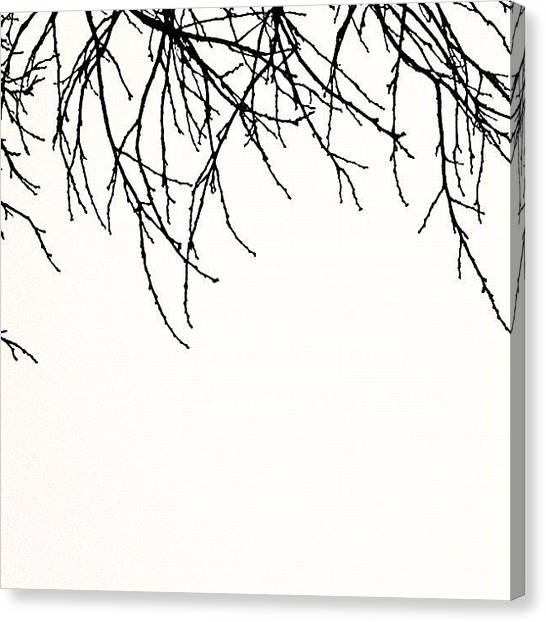 Minimalism Canvas Print - Downward Facing by Courtney Haile