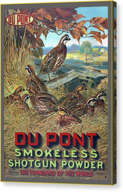 Shotguns Canvas Print - Du Pont Smokeless by Gary Grayson