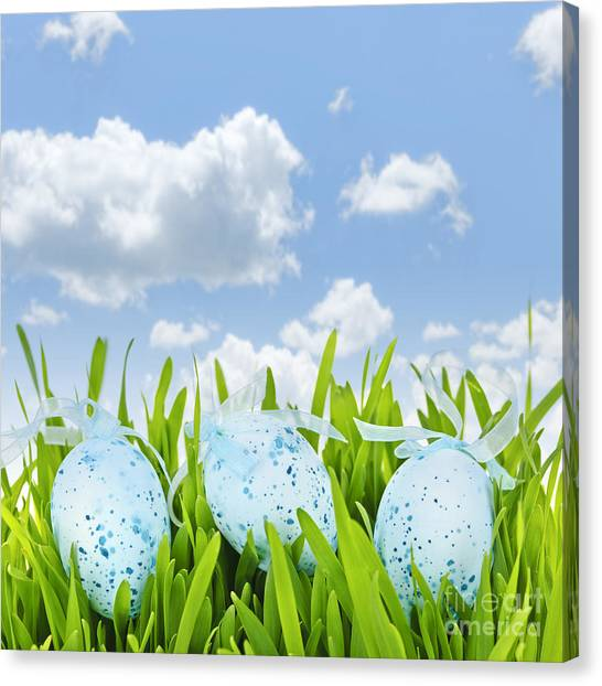 Easter Eggs Canvas Print - Easter Eggs In Green Grass by Elena Elisseeva