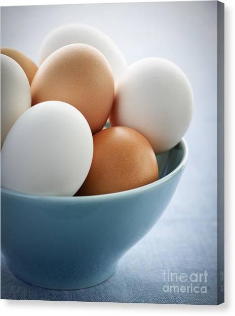 Eggshell Canvas Print - Eggs In Bowl by Elena Elisseeva