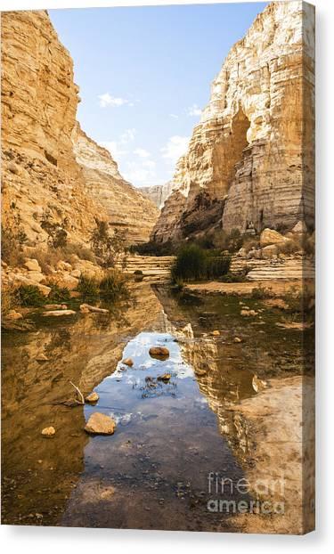 Negev Desert Canvas Print - Ein Avdat Negev Israel by Eyal Bartov