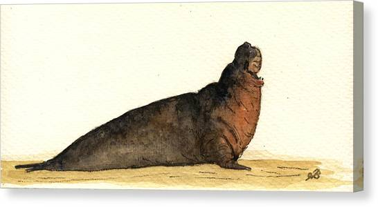 Ivory Canvas Print - Elephant Seal by Juan  Bosco