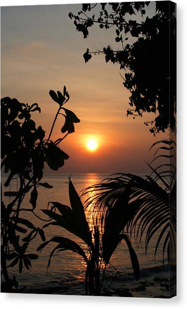 Evening Sun Canvas Print
