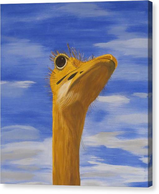 Eye To The Sky Canvas Print