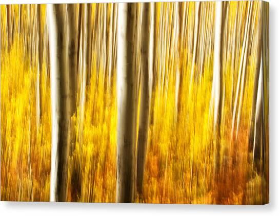Fall Abstract Canvas Print
