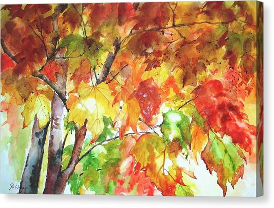 Fall Folliage  Canvas Print