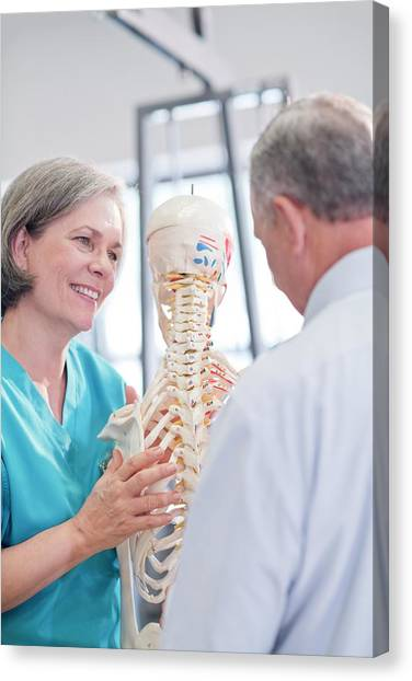 Female Chiropractor Showing Anatomical Model Canvas Print by Science Photo Library