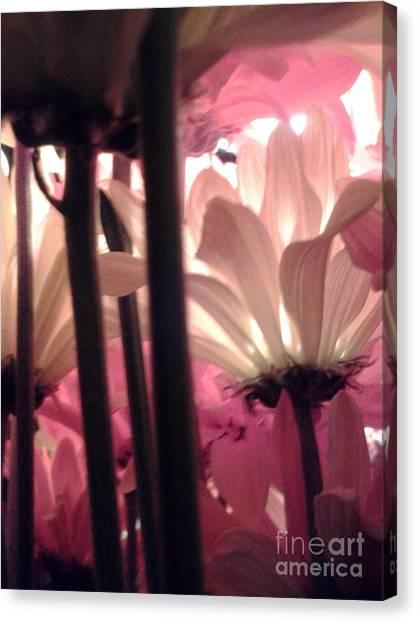 Flowerlife2 Canvas Print