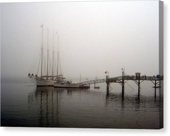 Fogged In Canvas Print