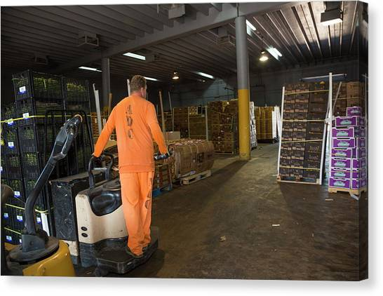 Forklifts Canvas Print - Food Bank Warehouse by Jim West/science Photo Library