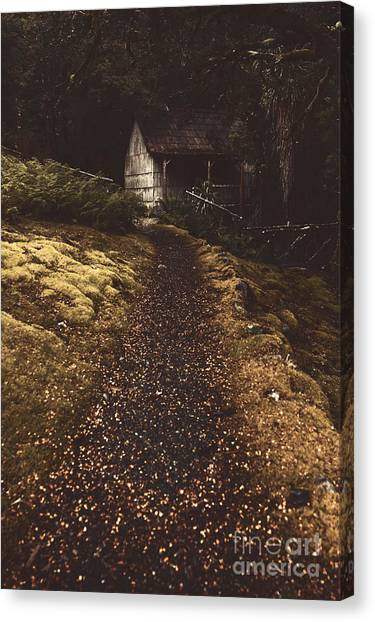 Old Houses Canvas Print - Forest Log Cabin Or Cottage With Leafy Autumn Path by Jorgo Photography - Wall Art Gallery