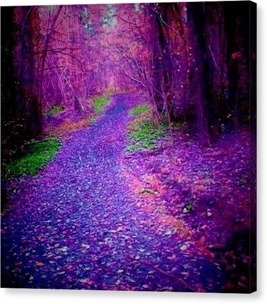 Forest Paths Canvas Print - Forest Path Purple by Candy Floss Happy